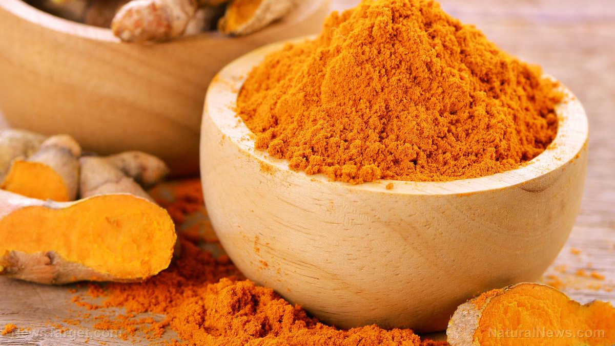 Fermented turmeric prevents memory loss caused by oxidative